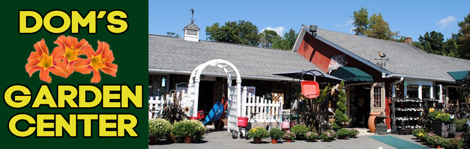 Doms Garden Center Nursery Plants Danbury Ct